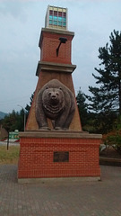 Au pays des ours / Where bears rule