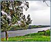 Waikato River View.