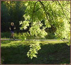 Walk for light