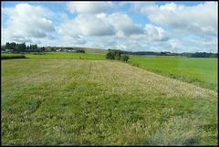 fields near Upavon