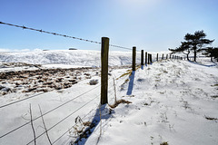 Due South by the A68, Soutra Hill, Scottish Boarders - 5th April 18 (HFF everyone)