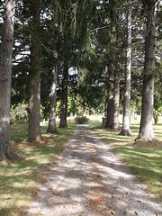 Sentier funéraire / Funerary path