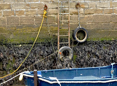 Harbour walls at low tide. Seaton Sluice, Northumberland