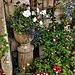 Mum's garden, a hidden corner.
