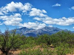 Miller & Carr Peaks