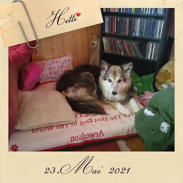 Erstes Foto im neuen Heim ♡