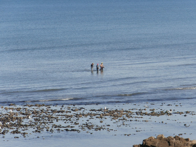The three swimmers coming ashore