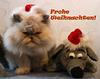 Frohe Weihnachten wünscht Noelia und Kumpel Maus