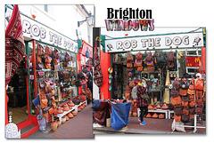Rob the Dog - Brighton windows - 31.3.2015