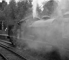 Early morning steam @ Pickering