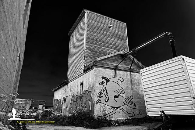 Vardø Street Art