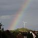 Regenbogen über Ditzingen