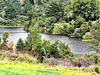 By The Karapiro Dam.