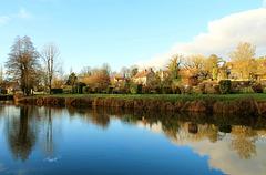 Reflet au bord de l'étang