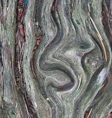 Die Natur als Bildhauer