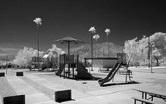 Wardman Park Playground (1039)