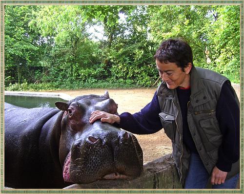 Madame Hippo aime les câlins ♥ Madam Hippo loves the cuddles ♥
