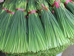 Gyeong-dong market, marché aux herbes médicinales de Séoul (Corée du Sud)