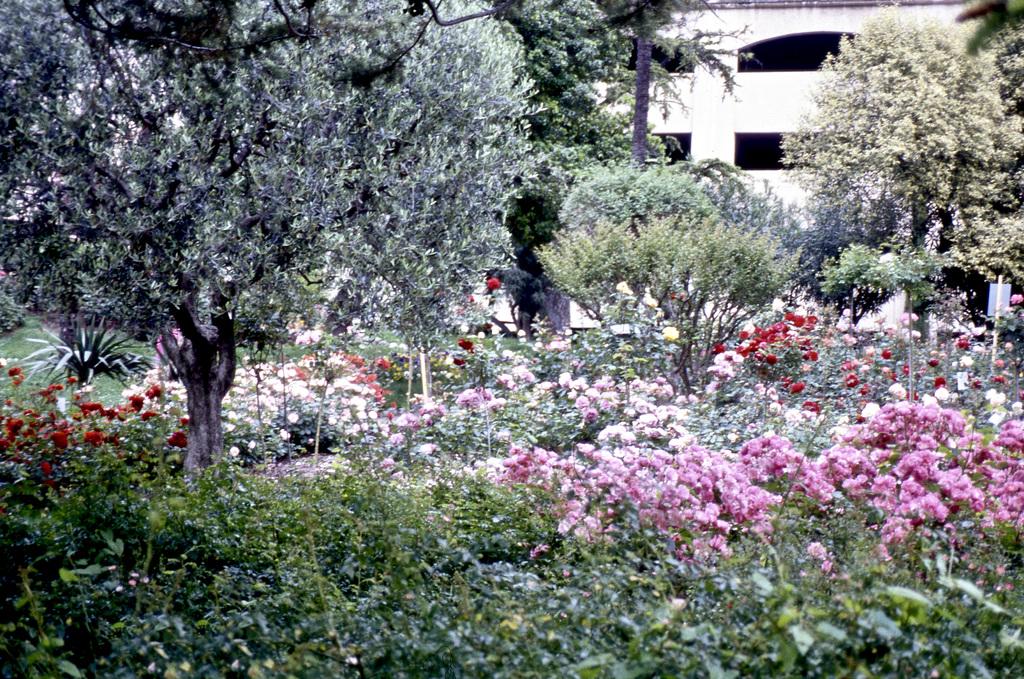 Kleiner Park in Grasse (Diascan)