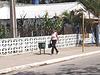 Arbres asphaltés et jolie cubaine