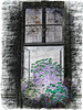 ...window creation...