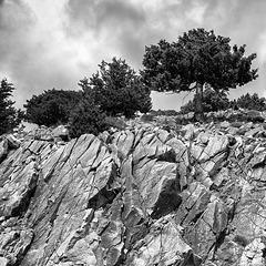 rocky_ground