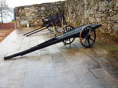 Carts of Montalegre