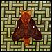 6295689 DxOdL · Moth
