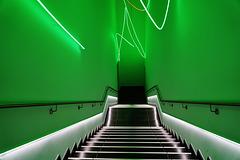 Magisches Grün -  Magical Green