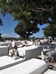 Lits funéraires / Funerary white beds