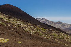 Canary Islands - Tenerife - On the Pico Viejo slopes