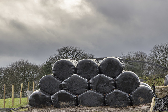 Silage hexagons
