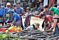 Vietnam 2016 / Bac Ha  1xPiP
