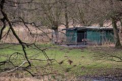 20160209 9896VRAw [D~LIP] Schaftstall, Landschaftsgarten, Bad Salzuflen