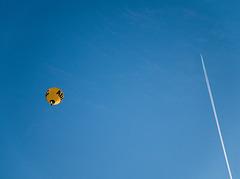 hot-air ballon