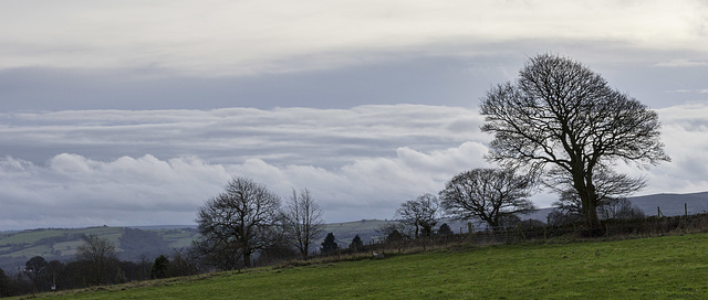 Whirlow Farm cloudscape with trees 3