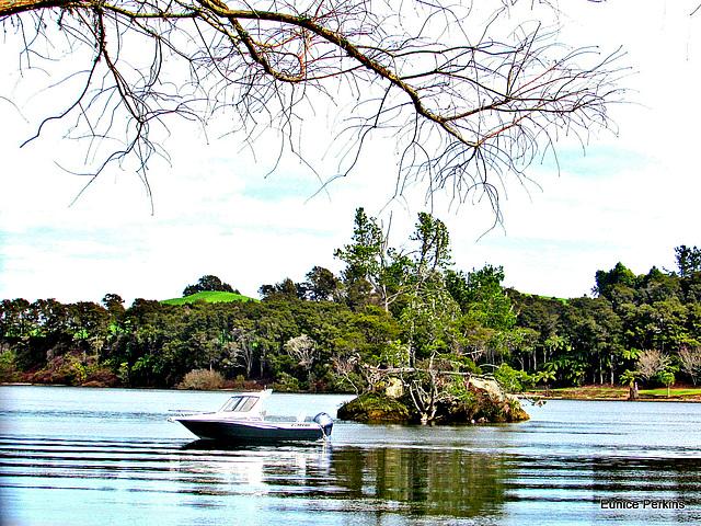 Boat at Jones Landing.