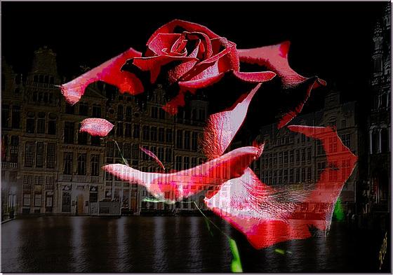 Pour toutes les victimes de Bruxelles et de tout mon coeur avec leur famille