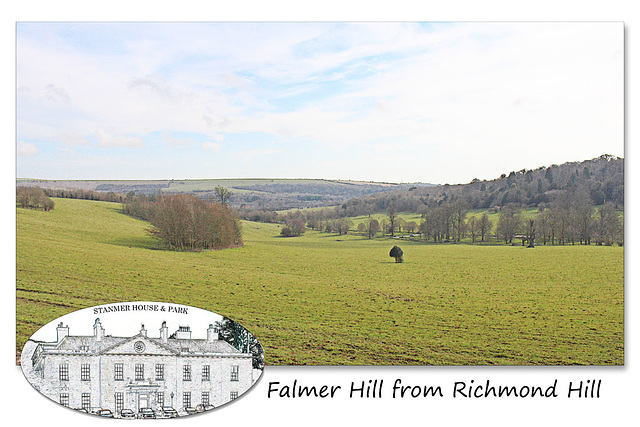 Falmer Hill from Richmond Hill in Stanmer Park - 1.4.2016