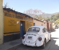 Modulo VW