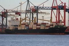 Containerfrachter Azargoun