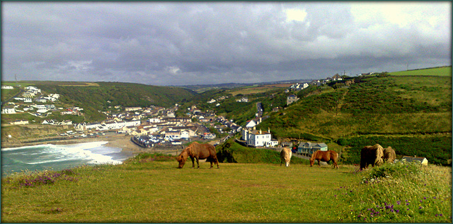 Portreath from Treaga Hill and ponies.