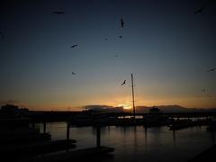 the wharf...