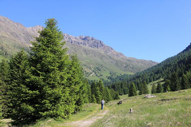 Südtiroler Bauer auf dem Weg....
