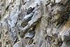 Gesteinsstrukturen in der Schramme - Valser Tal  (2 Pic in Pic)