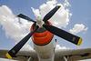 Grumman AF-2S Guardian
