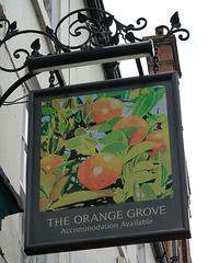 'The Orange Grove'