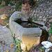 Piccolo fontanile lungo la via Farnesiana. Allumiere (RM) Italy