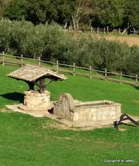 Fontanile visibile dalla Strada Provinciale 3A - Allumiere (RM) Italy