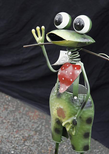 La grenouille.... :-)